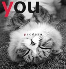 prodeza(プロデザ)管理人